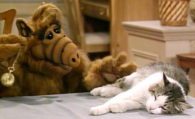 extraterrestre qui mange des chats