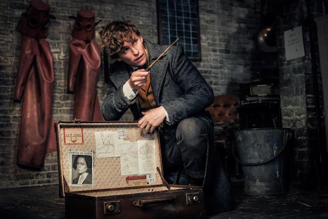 Eddie Redmayne - Les Animaux Fantastiques Les Crimes de Grindelwald