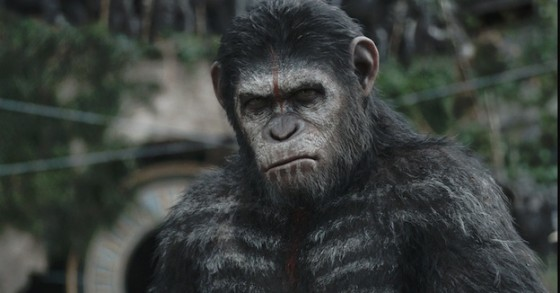 Cesar (Andy Serkis) - La Planete des Singes - L'Affrontement (Dawn of the Planet of the Apes) de Matt Reeves