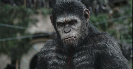 Cesar (Andy Serkis) - La Planete des Singes - L'Affrontement (Dawn of the Planet of the Apes) de Matt Reeves