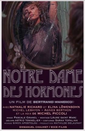 Notre Dame des Hormones de Bertrand Mandico - affiche