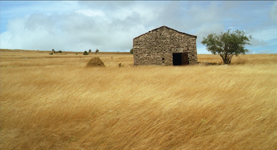 Mateo Falcone de Eric Vuillard - Aloest Distribution