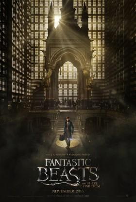 Les Animaux Fantastiques - poster