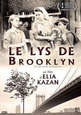 Le Lys de Brooklyn - jaquette