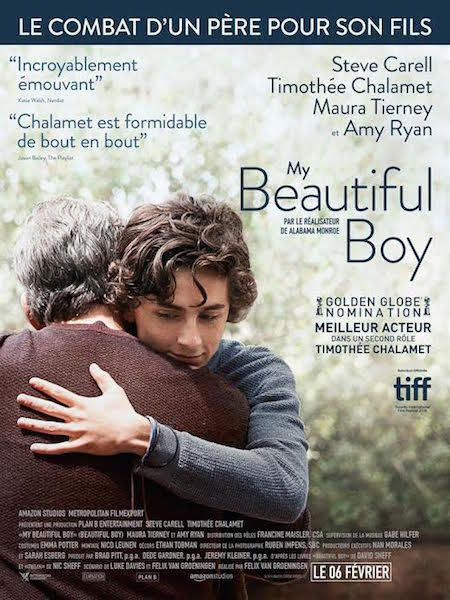 My Beautiful Boy - affiche