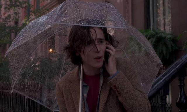 Timothee Chalamet - Un Jour de pluie a New York
