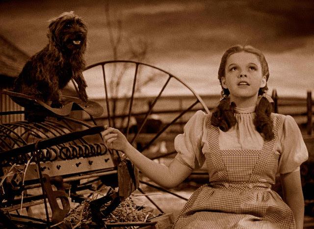 Judy Garland - Le Magicien dOz
