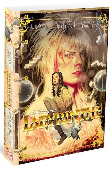 Labyrinthe - livre